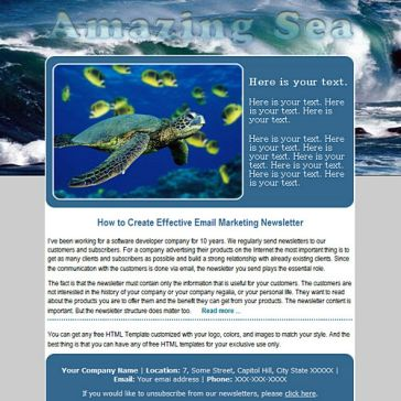Email Template: Amazing Sea