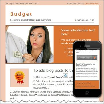 Email Template: Budget