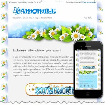 Email Template: Camomile