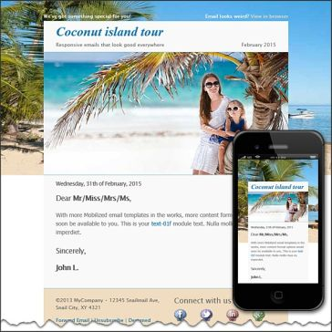 Email Template: Coconut island