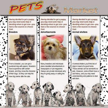 Email Template: Pets Market